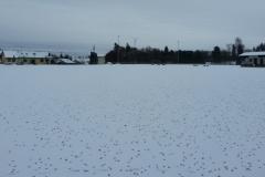 Winter_1_s